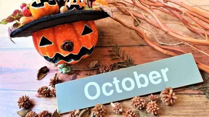 【フラット35金利速報】制度変更で融資率9割超の金利が大幅ダウン!!(令和元年10月分)