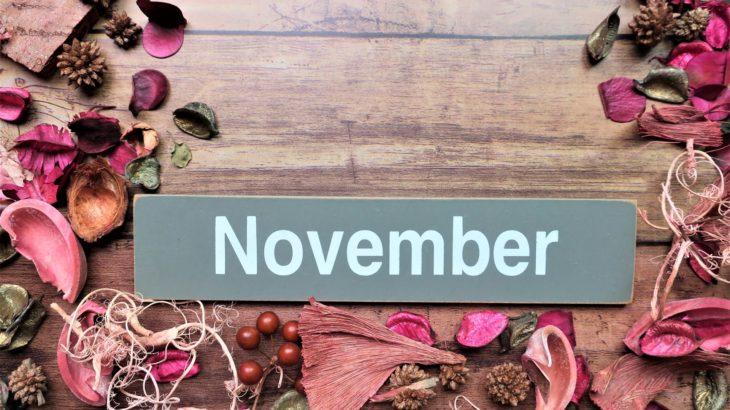【フラット35金利速報】今月は久しぶりに金利が上昇(令和元年11月分)