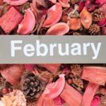 【フラット35金利速報】今月の金利も若干上昇(令和2年2月分)