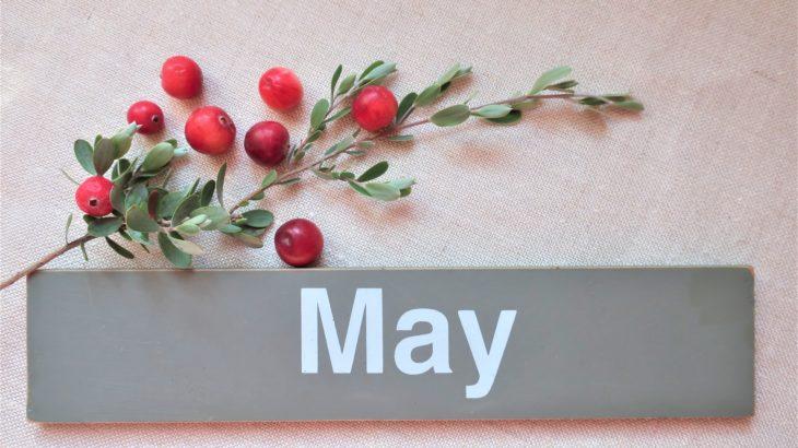 【フラット35金利速報】今月は金利据え置き…(令和2年5月分)